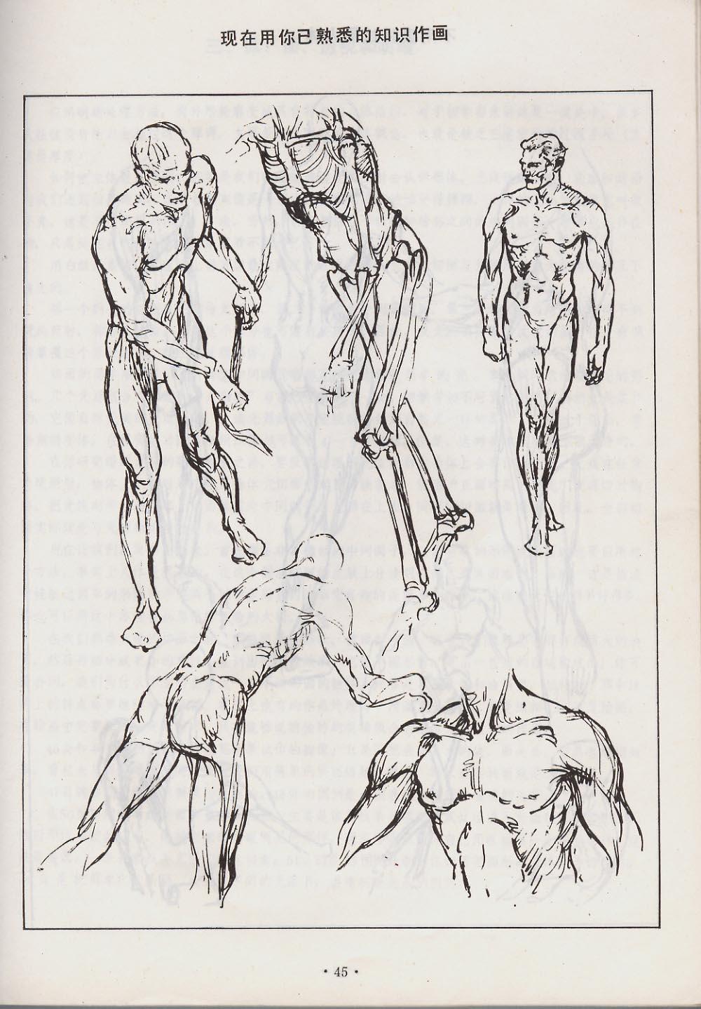 伯里曼结构速写-人体素描 汉语版
