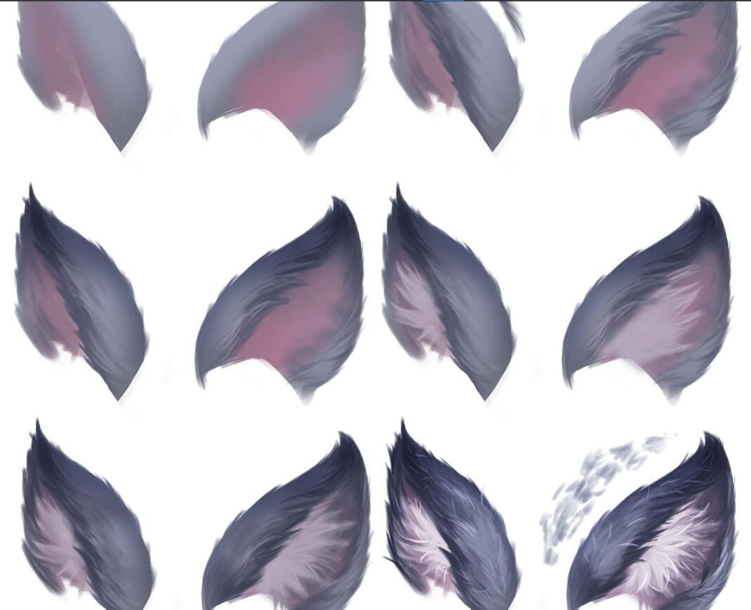动物毛发绘画视频教程 (mp4 psd)